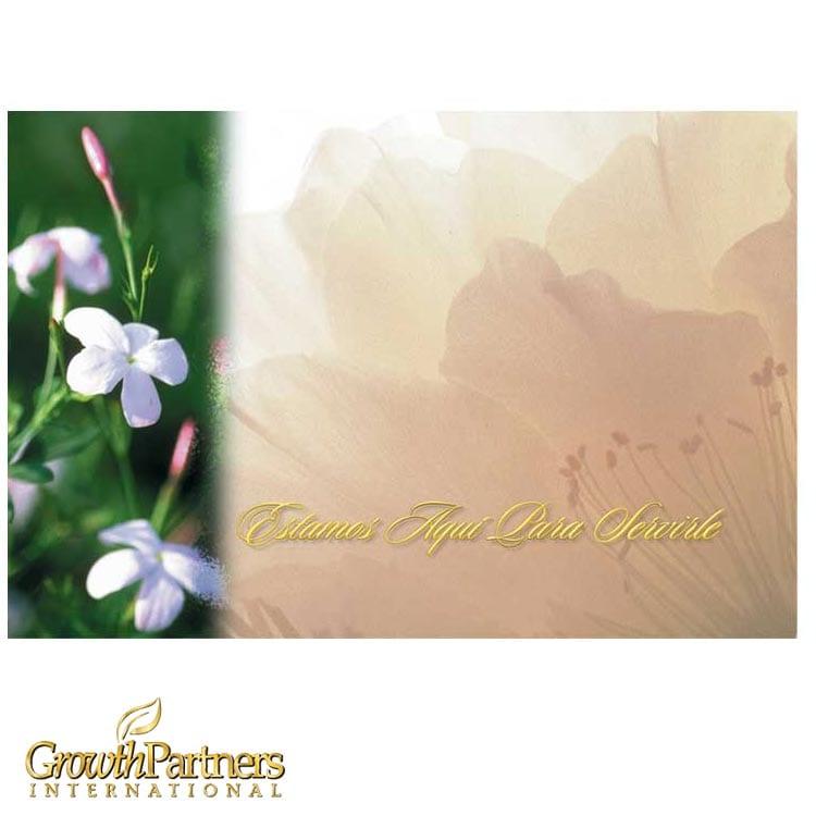 spanish wildflower post card